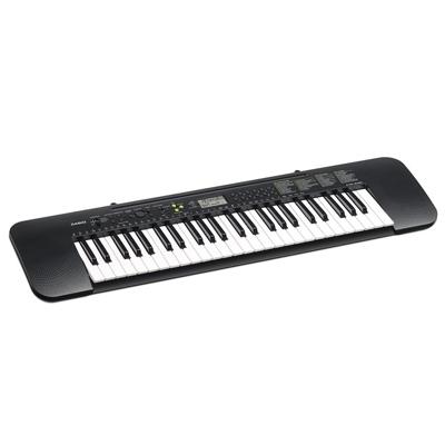 Casio CTK240 Keyboard