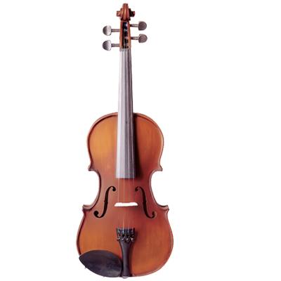 Vivo Neo by Hidersine Violin
