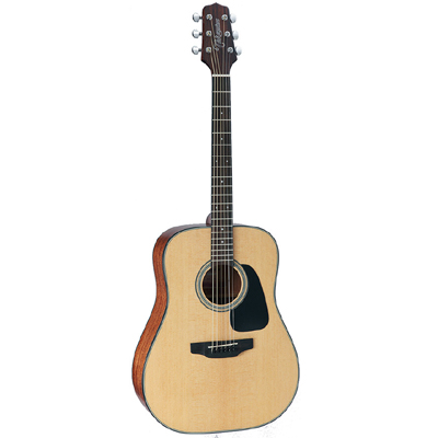 Takamine D Series Dreadnought Acoustic Guitar