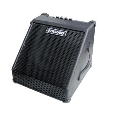 Strauss SPM30 Monitor Speaker