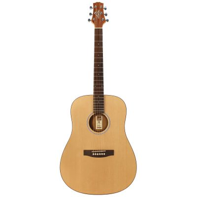 Ashton D20NTM Acoustic Guitar