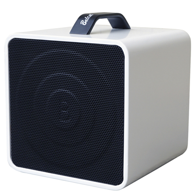 Belcat 40 watt Wireless Portable PA System