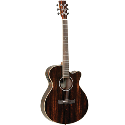 Tanglewood Discovery Exotic Ebony Guitar